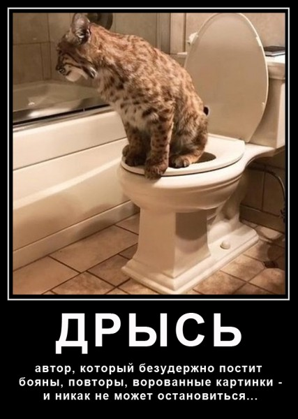 Мем: ДРЫСЬ, Anekdot_ru