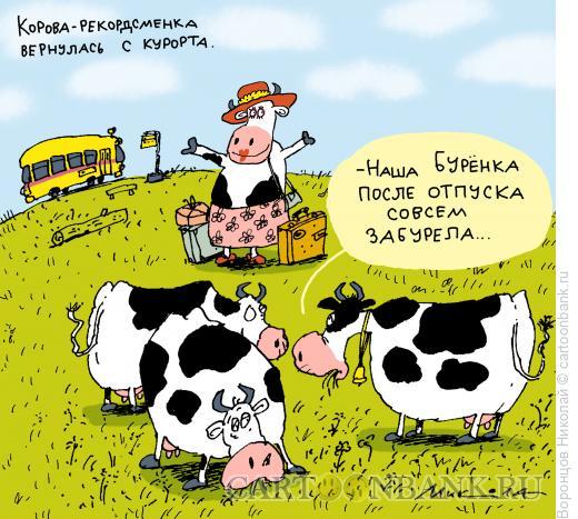 Карикатура: Бурёнка, Воронцов Николай