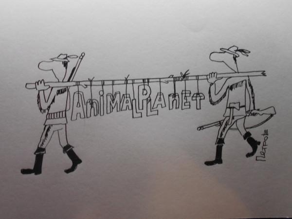 Карикатура: планета животных, Петров Александр