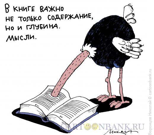 Карикатура: Содержание книги, Воронцов Николай