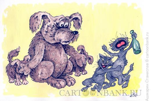 Карикатура: Коты разгулялись, Ашмарин Станислав