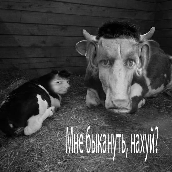 Мем: ОБРАЩЕНИЕ К ТЕМ, КТО СТАВИТ МИНУС, Ribak3D