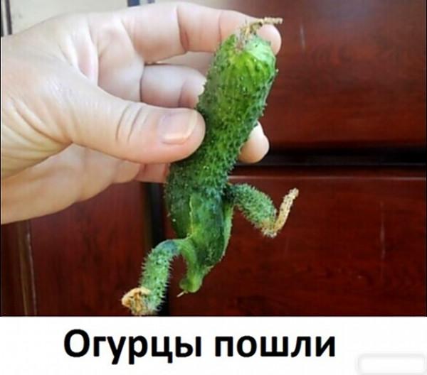 Мем, АндрейА