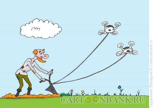 Карикатура: Пашня, Тарасенко Валерий