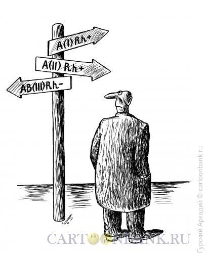 Карикатура: указатели на дороге, Гурский Аркадий