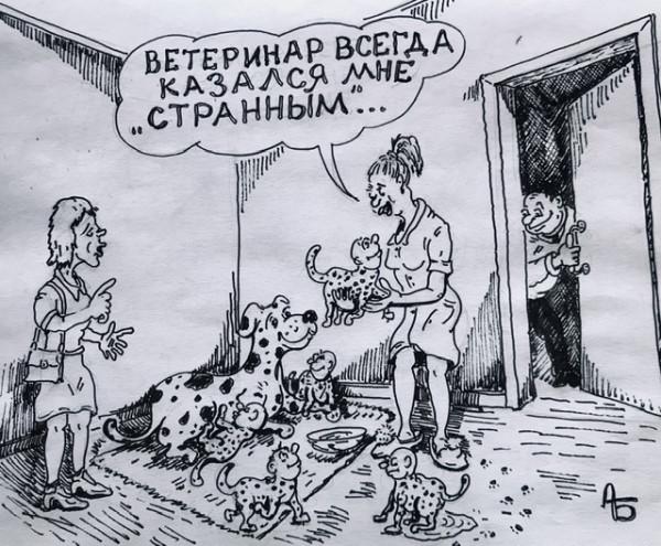 Карикатура: В мире животных. Ветеринар., backdanov