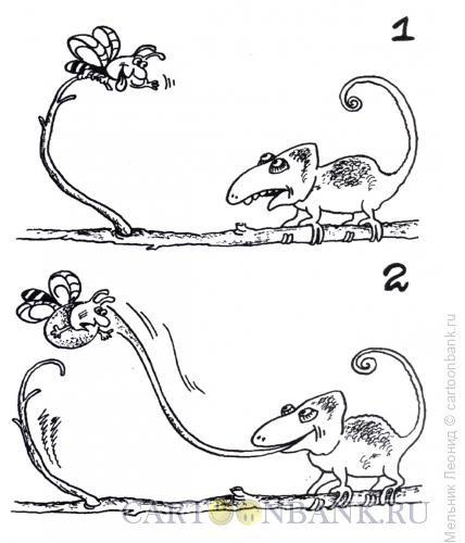Карикатура: Не дразнись!, Мельник Леонид