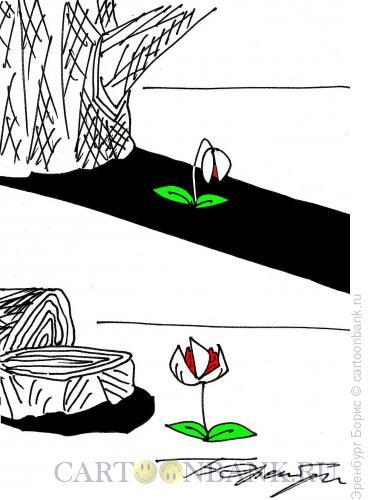 Карикатура: цветок и тень, Эренбург Борис