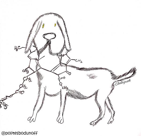 Карикатура: Любимый пес химика-органика, Ипполит Сбодунов