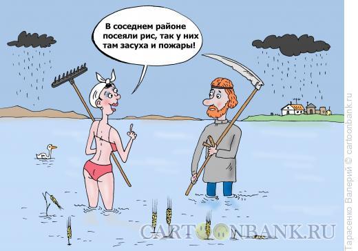 Карикатура: Стихия, Тарасенко Валерий