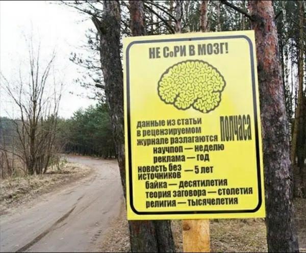 Мем: Беегите мозг, Дмитрий Анатольевич