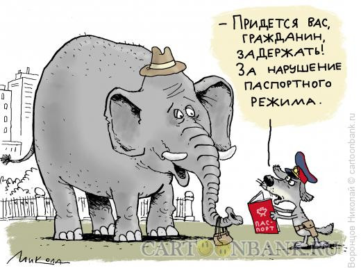 Карикатура: Паспортный режим, Воронцов Николай