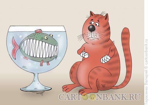Карикатура: Не золотая рыбка, Тарасенко Валерий
