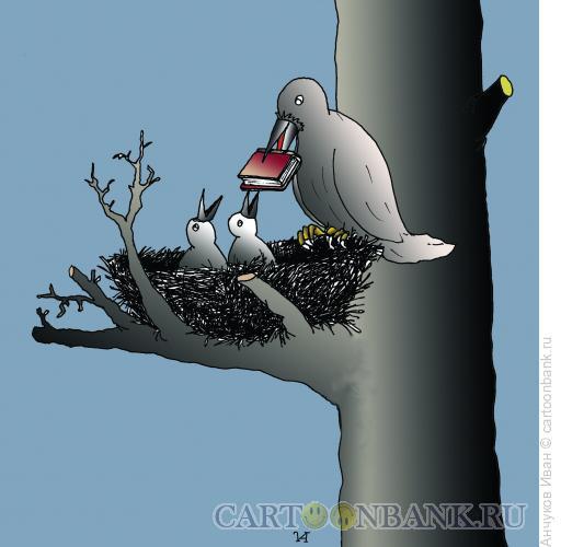 Карикатура: птенцы, Анчуков Иван