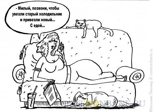 Карикатура: Современная хозяйка, Мельник Леонид