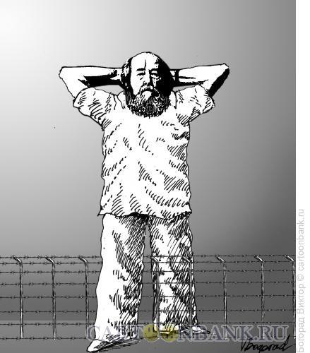 Карикатура: Солженицын, Богорад Виктор