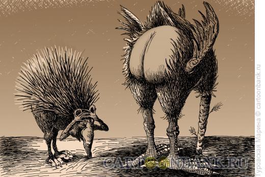 Карикатура: Страус и еж, Туровская Марина