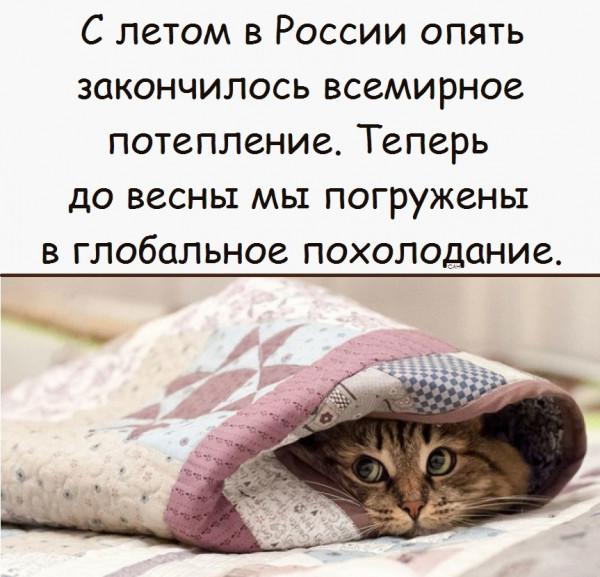 Мем, Александр САН