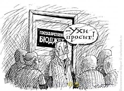 Карикатура: Бюджет, Валиахметов Марат