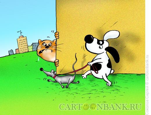Карикатура: собака выгуливает мышку, Соколов Сергей