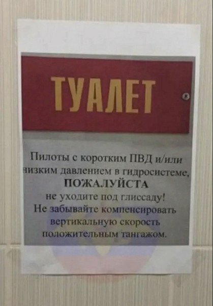 Мем: Служебный туалет в аэропорту, Дмитрий Анатольевич