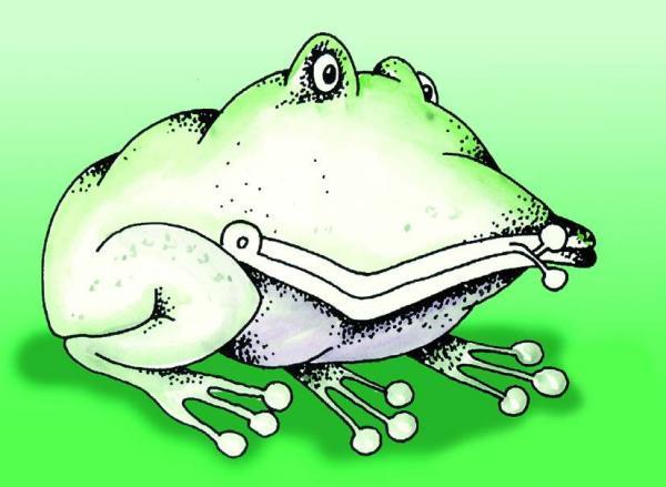 Карикатура: Лягушка, Виктор Джевага