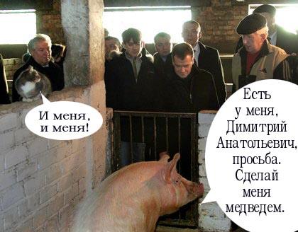 Карикатура: Просьба, sevich