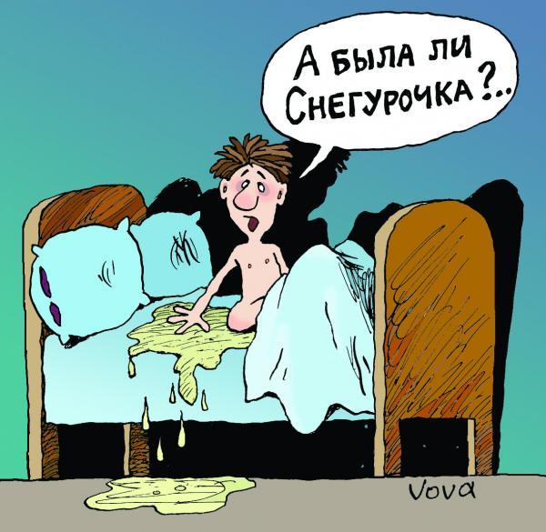 Карикатура: Была ли снегурочка, Владимир Иванов (VOVA)