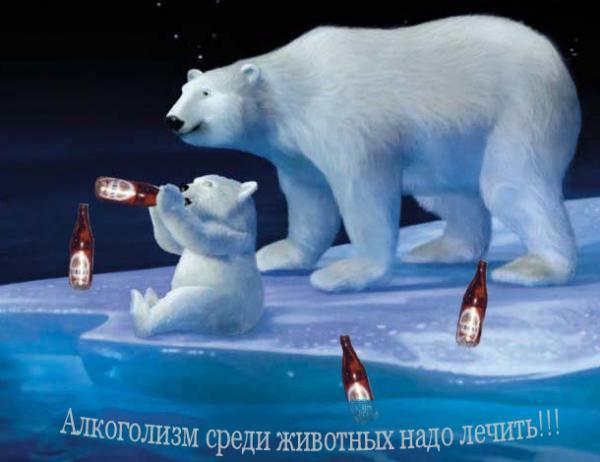 Карикатура: Братья наши меньшие..., Юляшка
