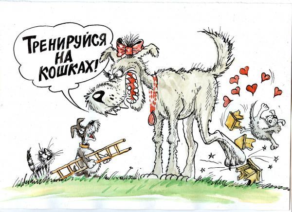 Карикатура: сучка, Избасаров Бауржан
