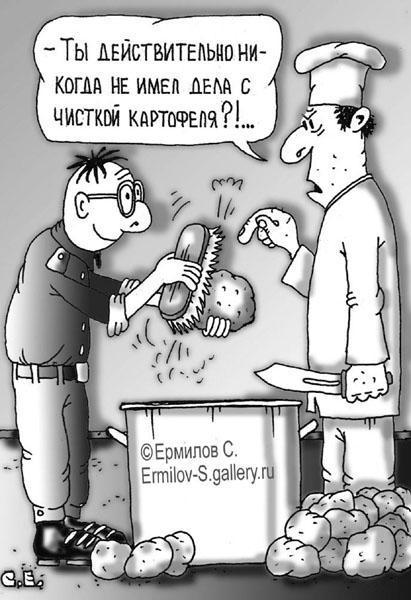 Карикатура: Картошка, Сергей Ермилов