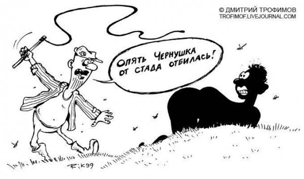 Карикатура: Чернушка отбилась, Трофимов Дмитрий