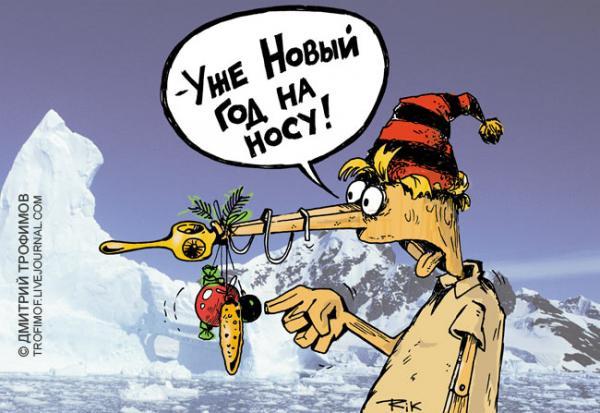 Карикатура: На носу, Трофимов Дмитрий