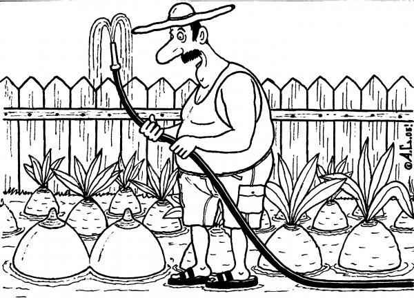 Карикатура, Александр Саламатин