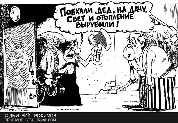Карикатура: ДАЧНЫЙ СЕЗОН, Трофимов Дмитрий
