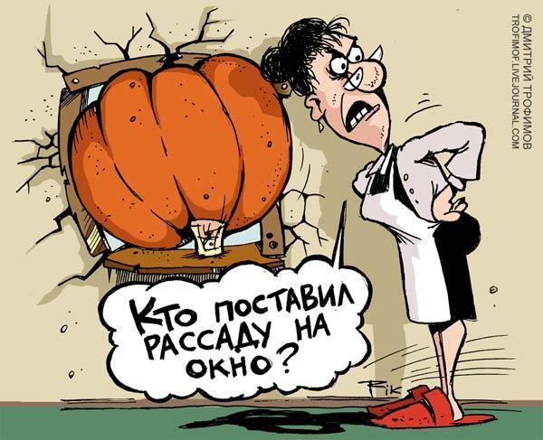 Карикатура: РАССАДА, Трофимов Дмитрий