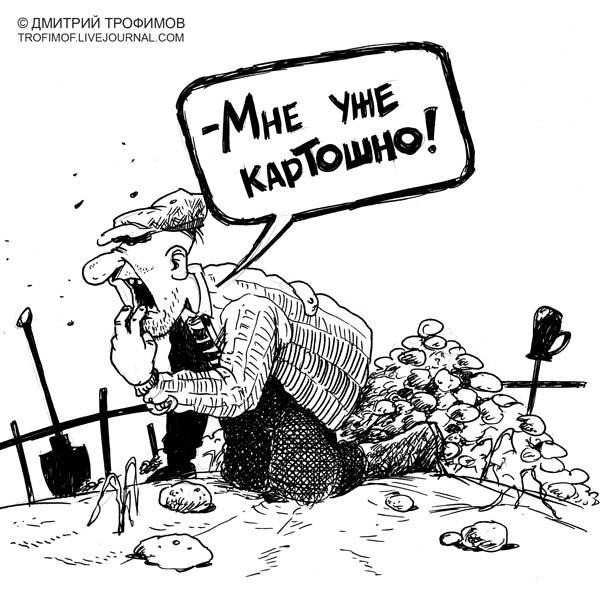 Карикатура: Картошка, Трофимов Дмитрий