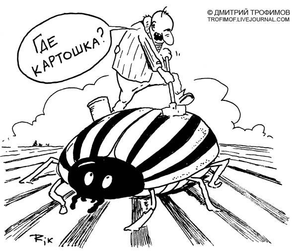 Карикатура: Генномодифицированый, Трофимов Дмитрий