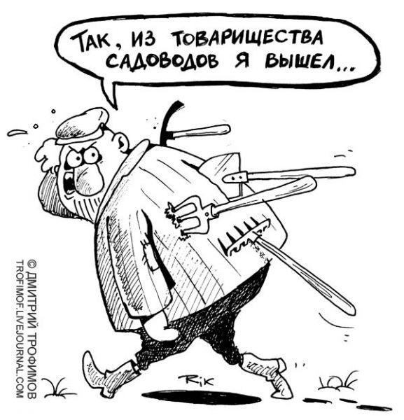 Карикатура: Обида, Трофимов Дмитрий