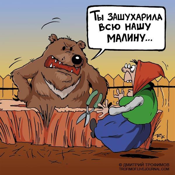 Карикатура: И перо за это получай!, Трофимов Дмитрий