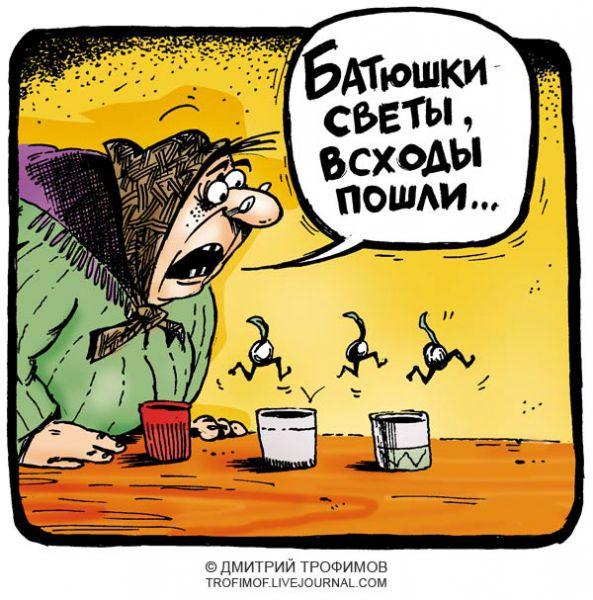 Карикатура: Саженцы, Трофимов Дмитрий