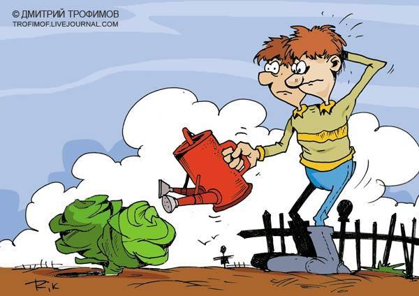 Карикатура: Два кочана, Трофимов Дмитрий