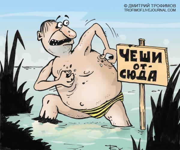 Карикатура: Чеши от сюда!, Трофимов Дмитрий