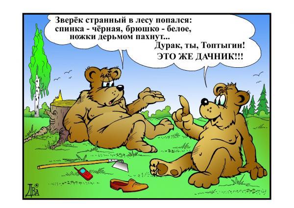 Карикатура: топтыгин, виктор дидюкин
