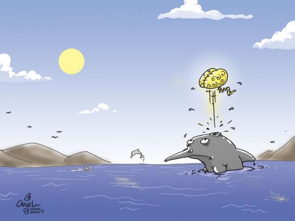 Карикатура: Дельфин, АнтонАнгел