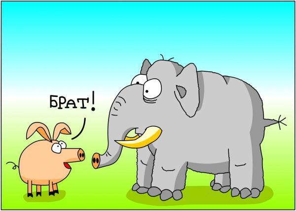 Карикатура: Брат, Дмитрий Бандура