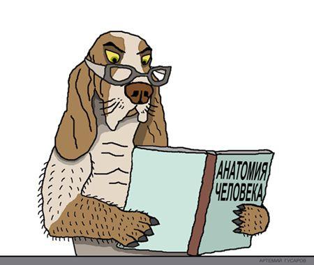 Карикатура: Собака Павлова, artemij