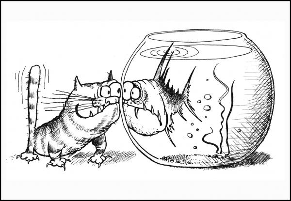 Карикатура: Кот и пиранья, Валерий Дмитриев