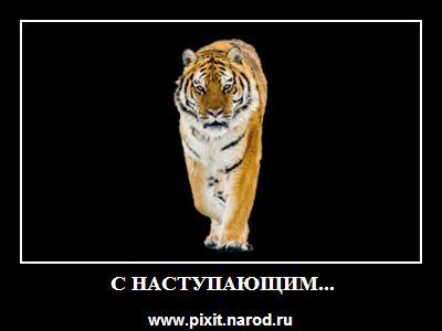 Карикатура: C наступающим..., Дмитрий Лавренков