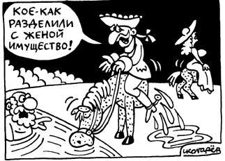 Карикатура: Раздел имущества, Игорь Колгарев
